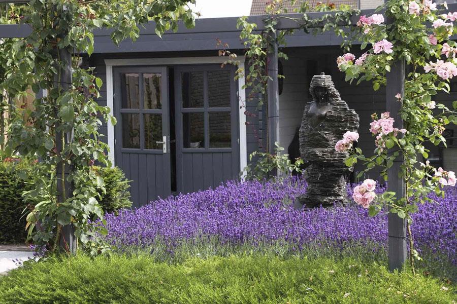 Landelijke Tuin Steenbergen Dutch Quality Gardens 1