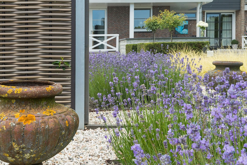 Dutch Quality Gardens Bosman Tuinadvies Moderne Strakke Tuin Met Vijvers Liggend Op Het Westen Foto 11 Min
