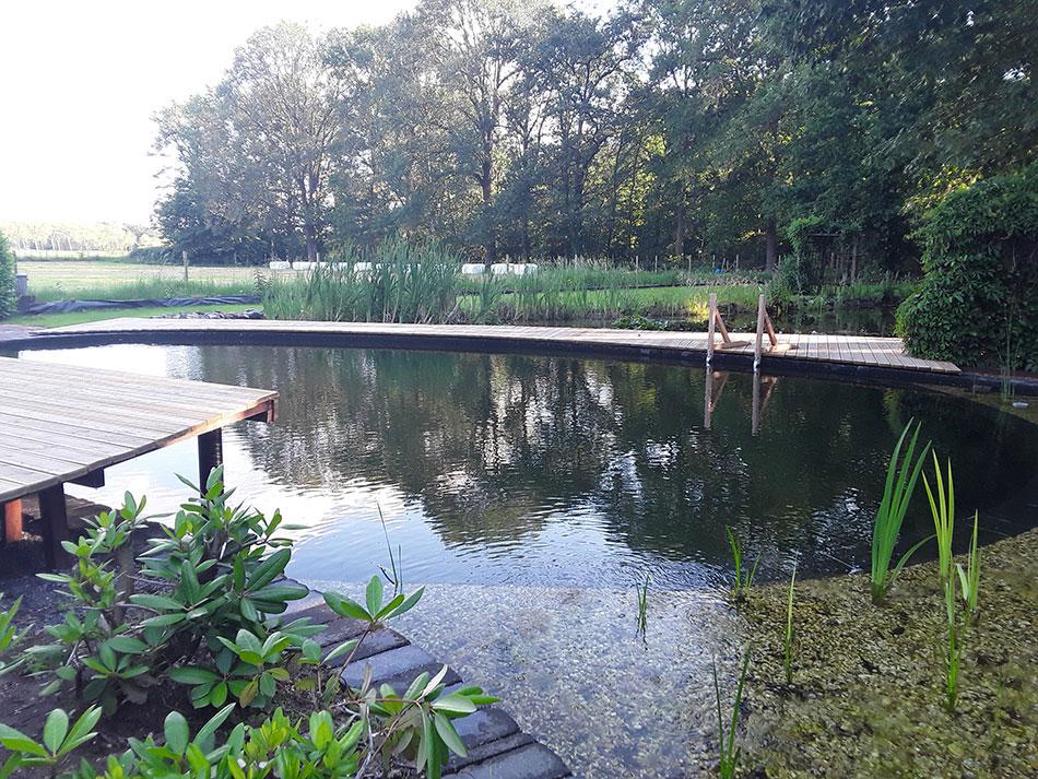 Dutch Quality Gardens Hans Linders Dqg Landelijk Tuin Met Moderne Kwinkslag Foto 2 Min