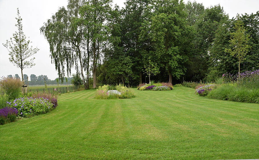 Dutch Quality Gardens Mocking Hoveniers Moderne Tuin Foto 1 Min