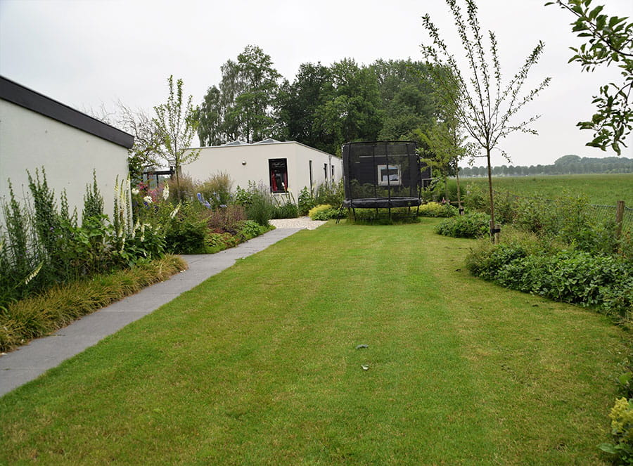 Dutch Quality Gardens Mocking Hoveniers Moderne Tuin Foto 13 Min