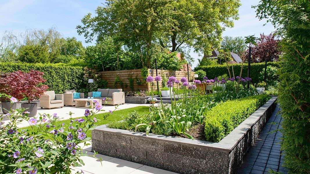 Dutch Quality Gardens Visio Vireo Contrastrijke Moderne Tuin Met Schaduwdoek In Steenbergen 1