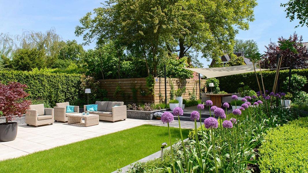 Dutch Quality Gardens Visio Vireo Contrastrijke Moderne Tuin Met Schaduwdoek In Steenbergen 4