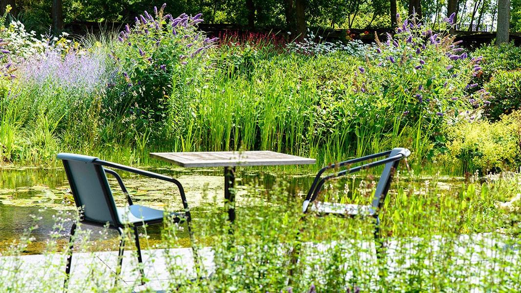 Dutch Quality Gardens Visio Vireo Harmonieuze Bloemtuin In Hoogerheide 7