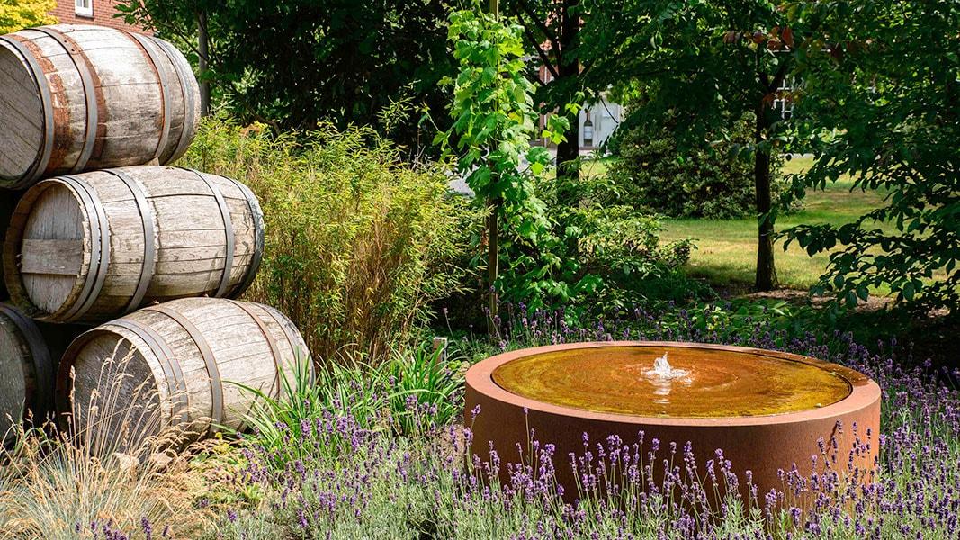 Dutch Quality Gardens Visio Vireo Harmonieuze Bloemtuin In Hoogerheide 9