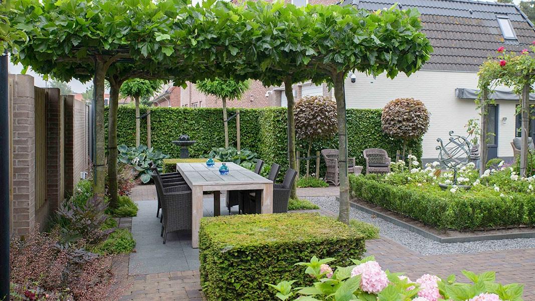 Dutch Quality Gardens Visio Vireo Klassieke Romantische Tuin In Roosendaal 3