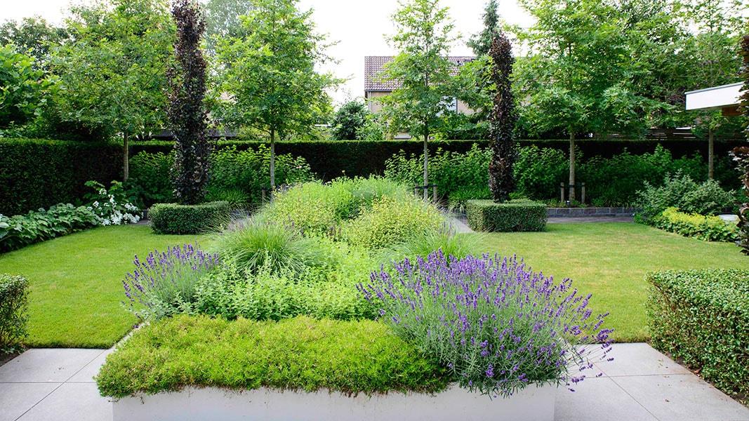 Dutch Quality Gardens Visio Vireo Sfeervolle Leeftuin In Teteringen 1