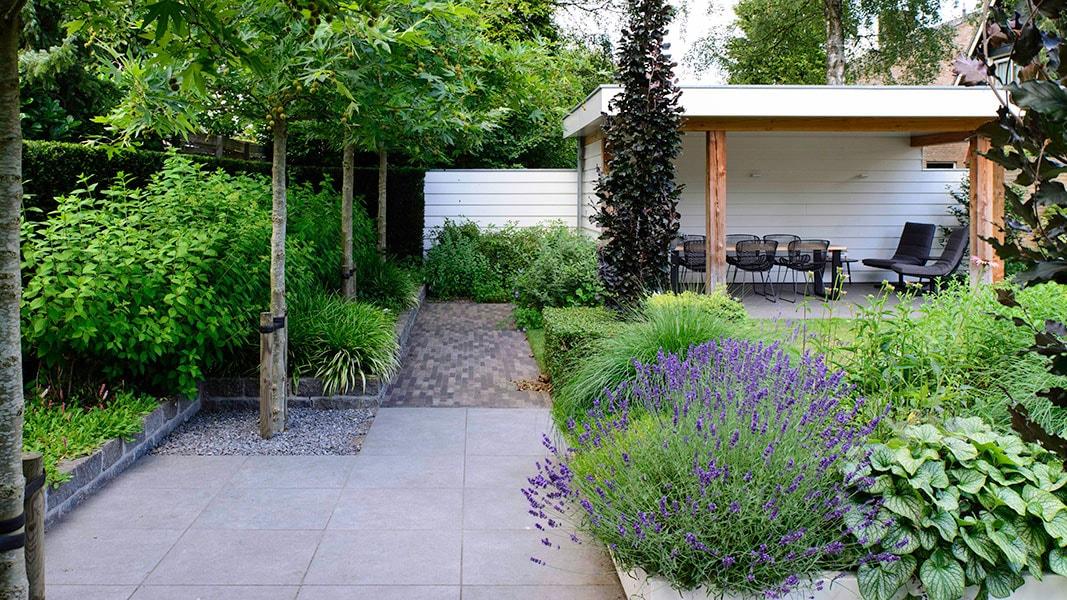 Dutch Quality Gardens Visio Vireo Sfeervolle Leeftuin In Teteringen 3