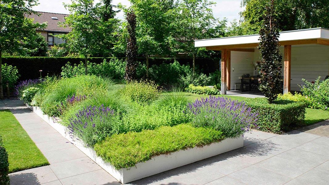 Dutch Quality Gardens Visio Vireo Sfeervolle Leeftuin In Teteringen 4