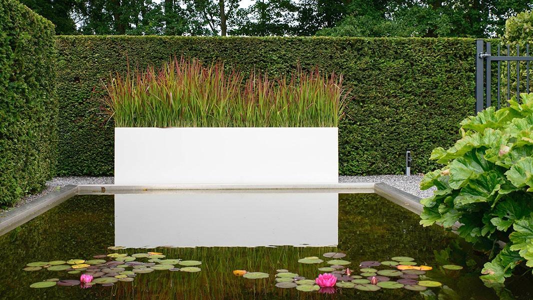 Dutch Quality Gardens Visio Vireo Vijvertuin Met Rood In De Hoofdrol In Woensdrecht 1