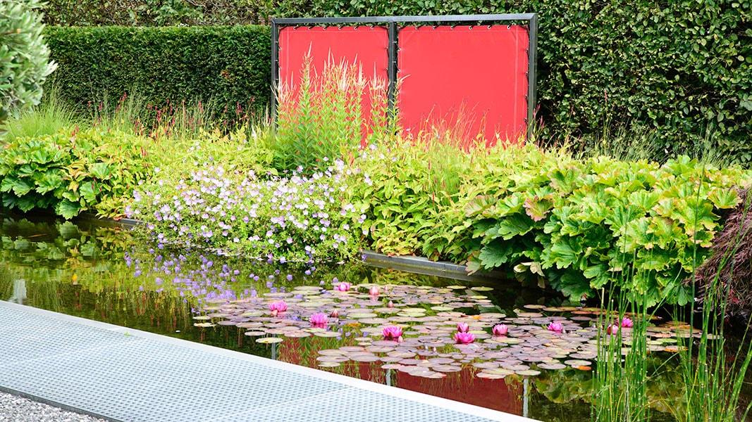 Dutch Quality Gardens Visio Vireo Vijvertuin Met Rood In De Hoofdrol In Woensdrecht 4