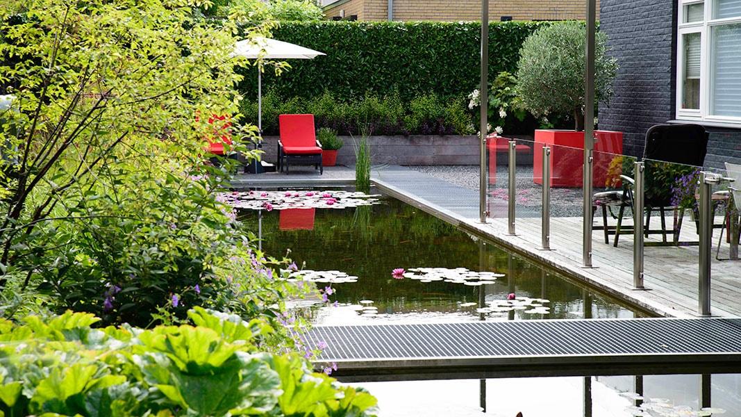 Dutch Quality Gardens Visio Vireo Vijvertuin Met Rood In De Hoofdrol In Woensdrecht 5