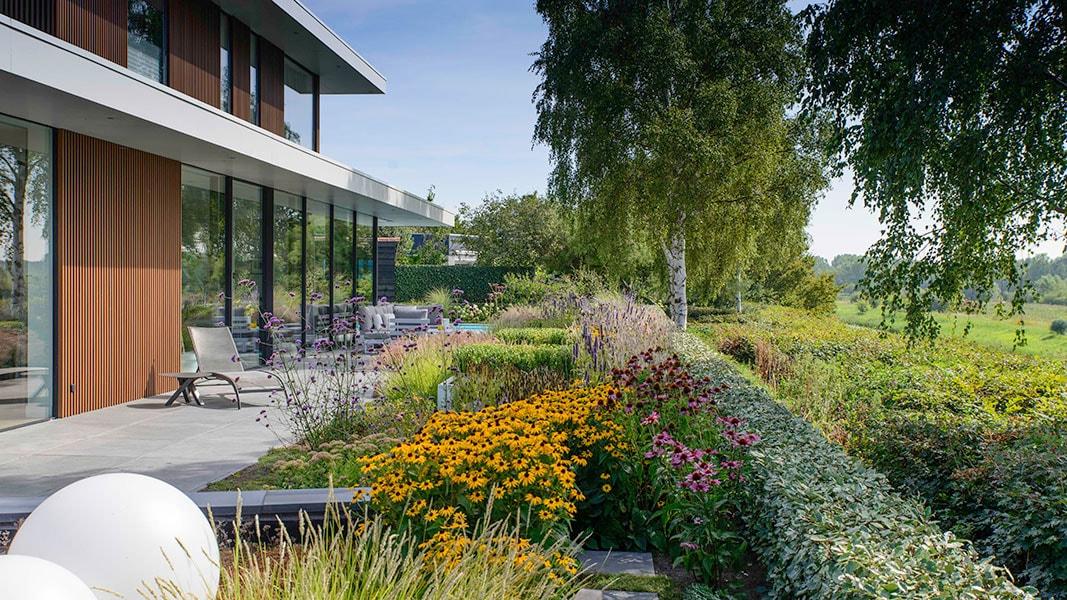 Dutch Quality Gardens Visio Vireo Bloementuin Bergen Op Zoom 3 A