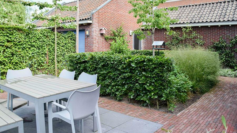 Dutch Quality Gardens Mocking Hoveniers Tuin Met Loungeterras 2