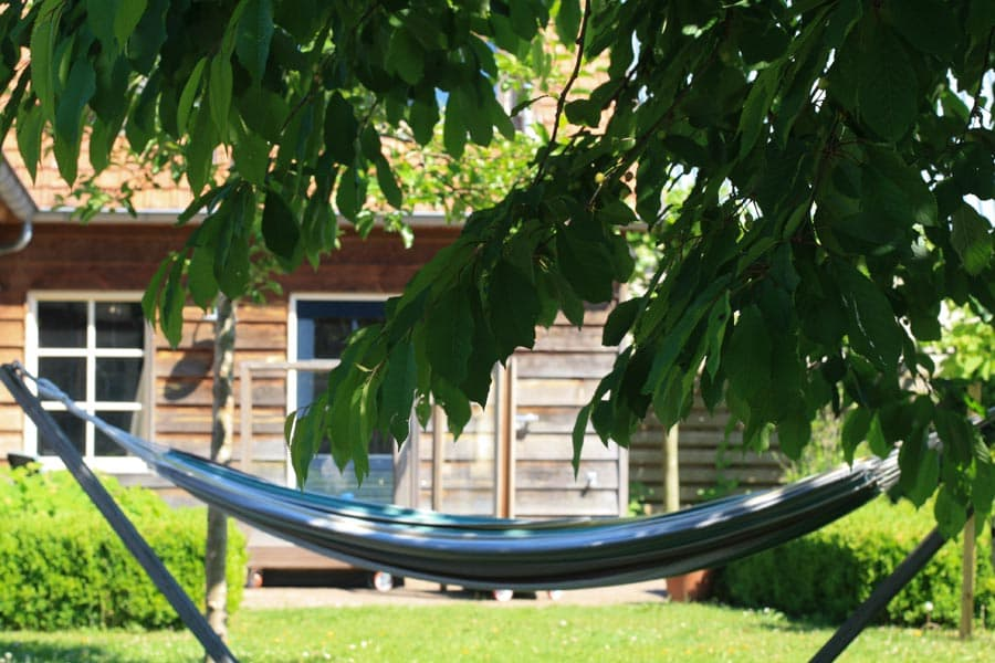 Gezinstuin Om Lekker In Te Leven Dutch Quality Gardens De Lingebrug Hoveniers 2