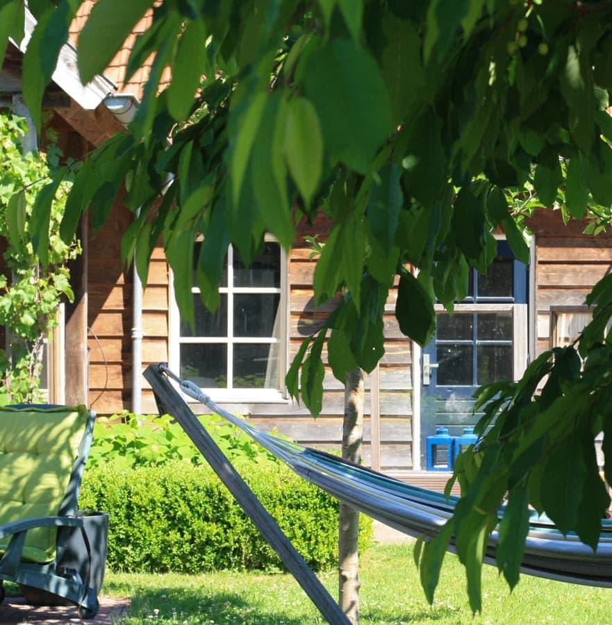 Gezinstuin Om Lekker In Te Leven Dutch Quality Gardens De Lingebrug Hoveniers 3