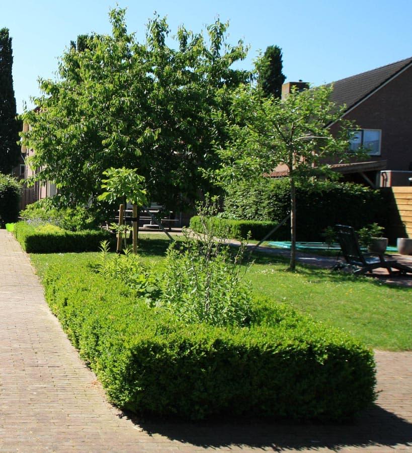 Gezinstuin Om Lekker In Te Leven Dutch Quality Gardens De Lingebrug Hoveniers 7