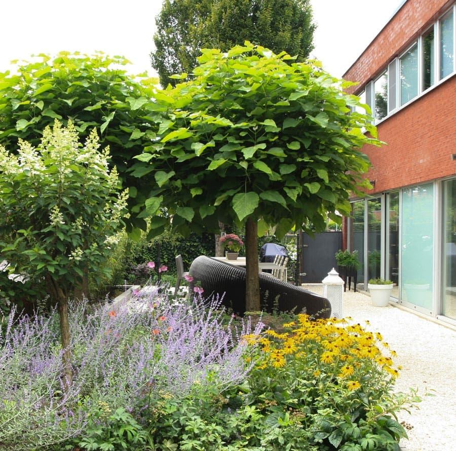 Modern En Robuust Dutch Quality Gardens De Lingebrug Hoveniers 4