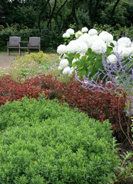 Natuurlijke Tuin Diepenveen De Brinker Tuinen 2
