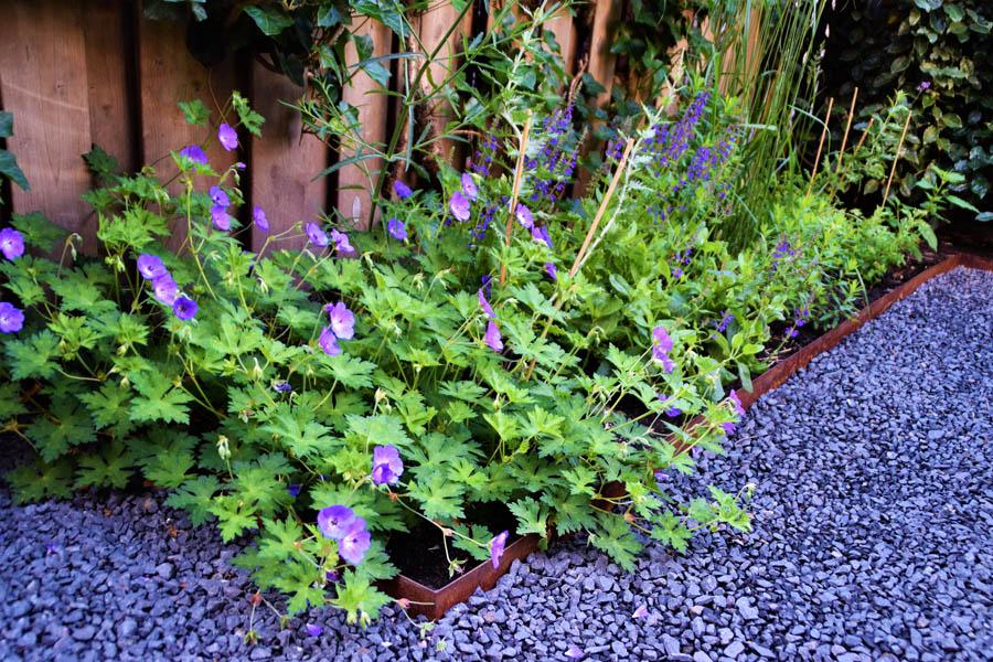 Vriendelijke Stadstuin Dutch Quality Gardens 12