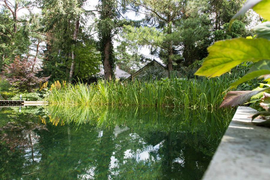Bostuin Dutch Quality Gardens De Lingebrug Hoveniers 2