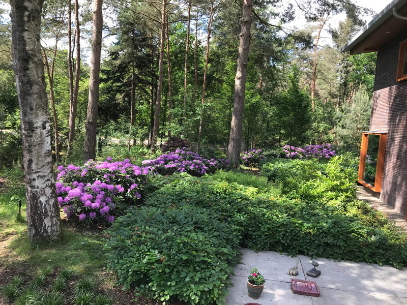 Bostuin Dutch Quality Gardens De Lingebrug Hoveniers 26