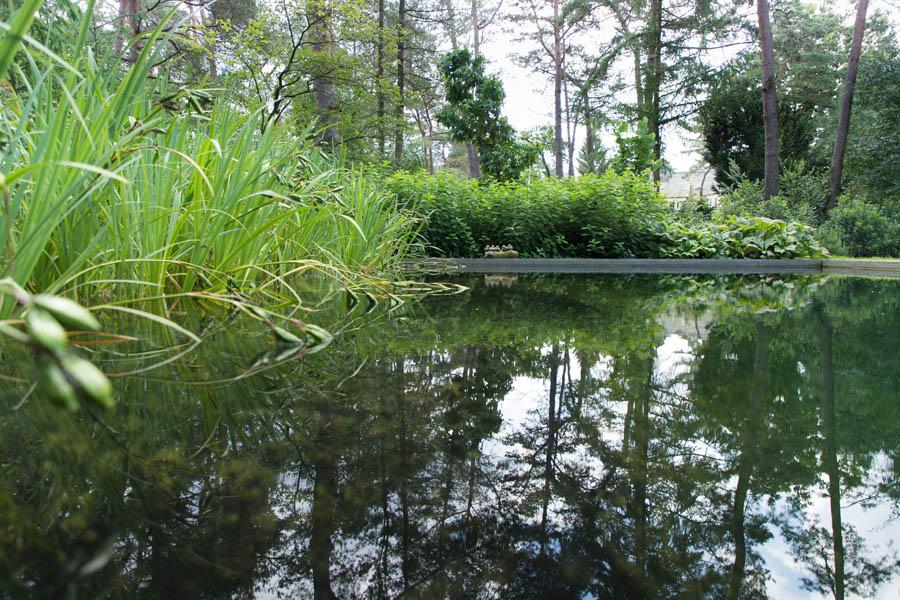 Bostuin Dutch Quality Gardens De Lingebrug Hoveniers 3