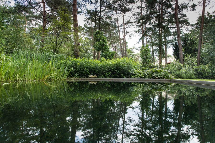 Bostuin Dutch Quality Gardens De Lingebrug Hoveniers 8