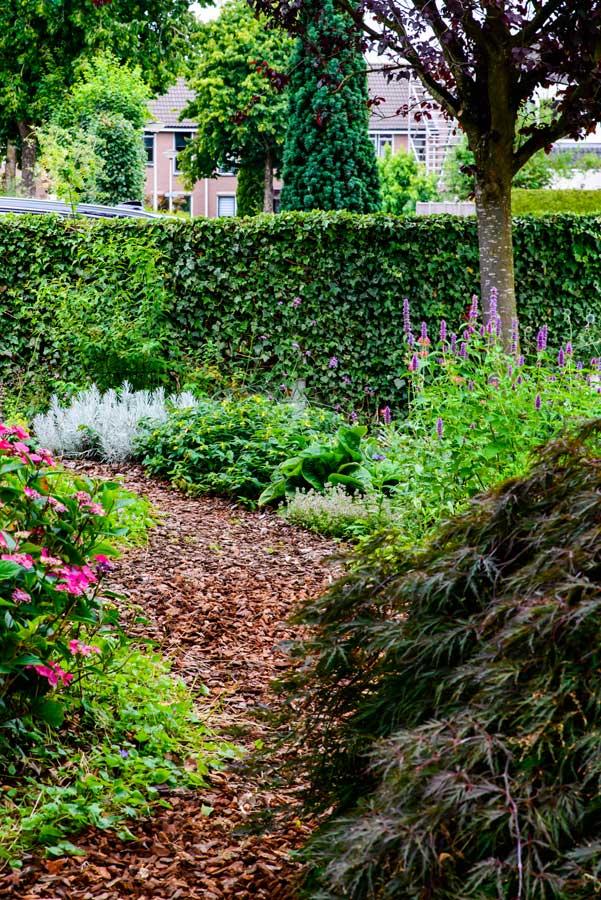 Klassieke Groene Tuin Eshuis Hoveniers 14