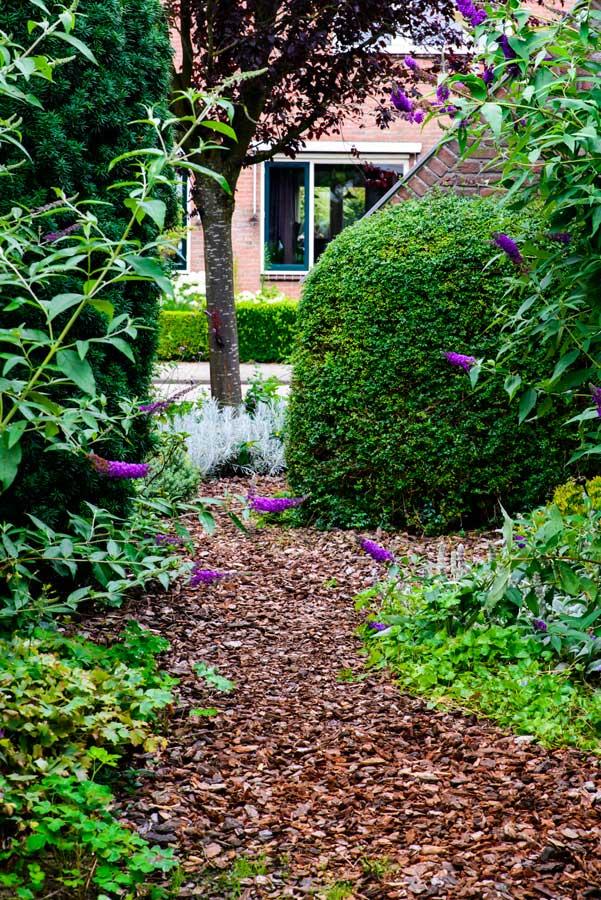 Klassieke Groene Tuin Eshuis Hoveniers 15