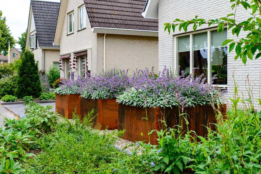 Klassieke Tuin Met Cortenstaal Eshuis Hoveniers 18