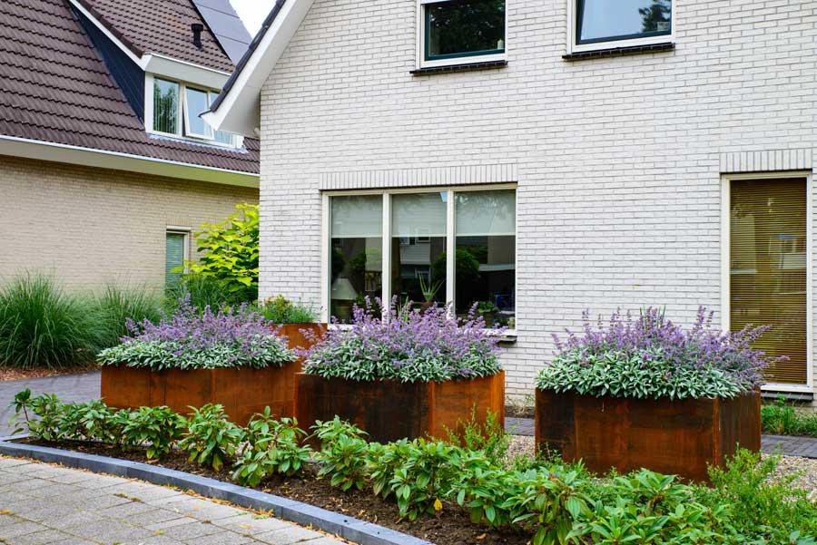 Klassieke Tuin Met Cortenstaal Eshuis Hoveniers 19