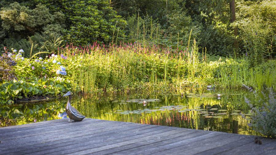 Landelijke Tuin Dutch Quality Gardens Van Ginkel Tuinen 2