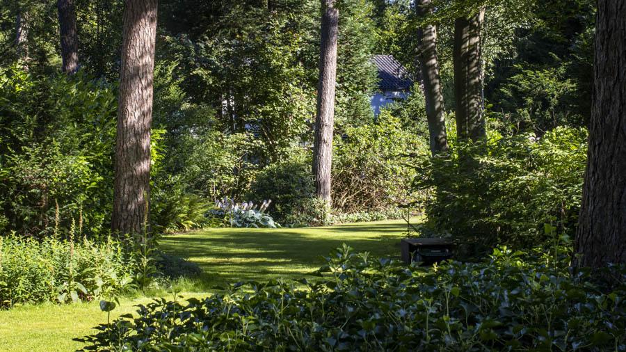 Landelijke Tuin Dutch Quality Gardens Van Ginkel Tuinen 3