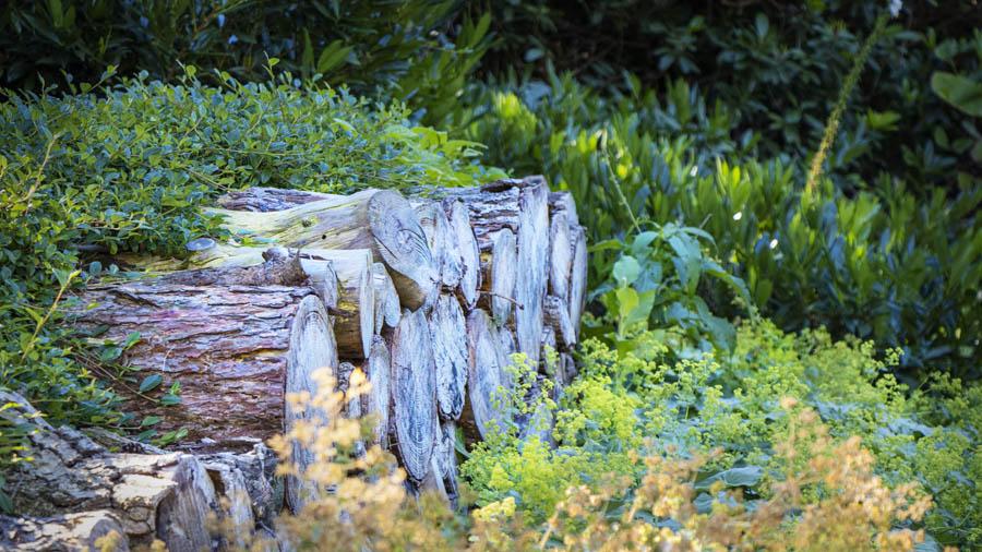 Landelijke Tuin Dutch Quality Gardens Van Ginkel Tuinen 4