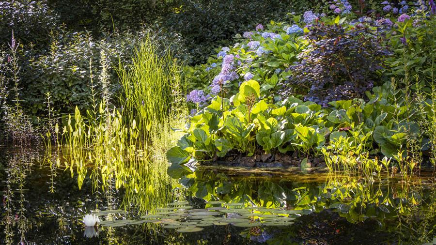Landelijke Tuin Dutch Quality Gardens Van Ginkel Tuinen 7
