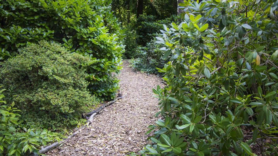 Landelijke Tuin Dutch Quality Gardens Van Ginkel Tuinen 9
