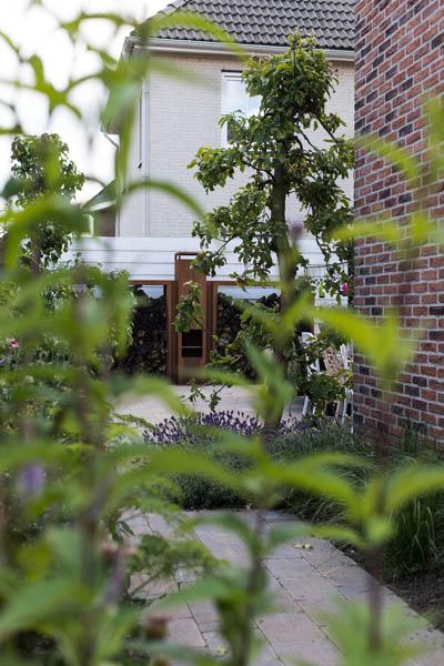 Liefde Voor Planten Vuur Dutch Quality Gardens De Lingebrug 3