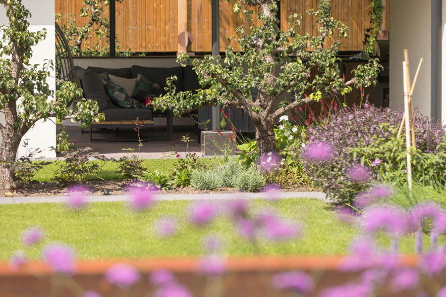 Modern Strakke Binnentuin Dutch Quality Gardens De Lingebrug 18