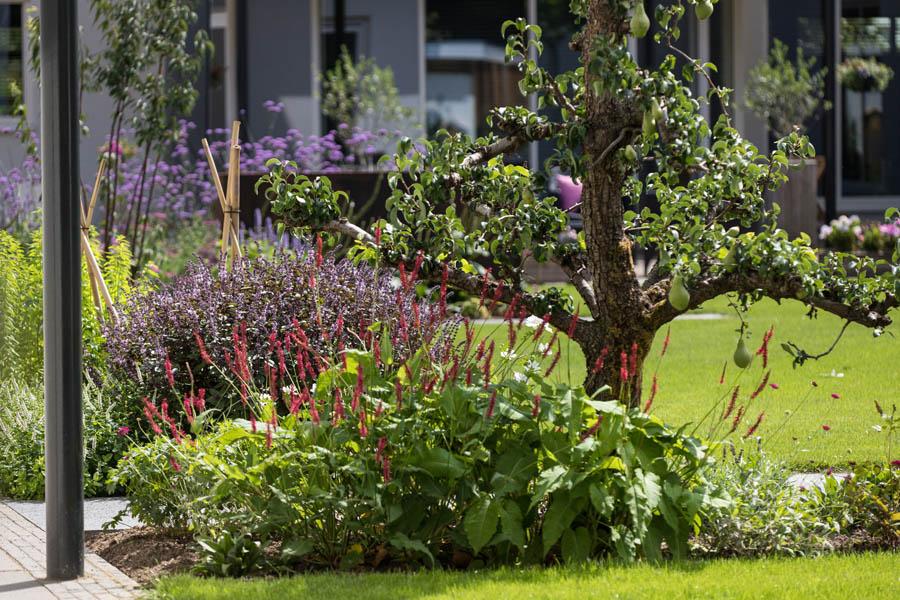 Modern Strakke Binnentuin Dutch Quality Gardens De Lingebrug 19