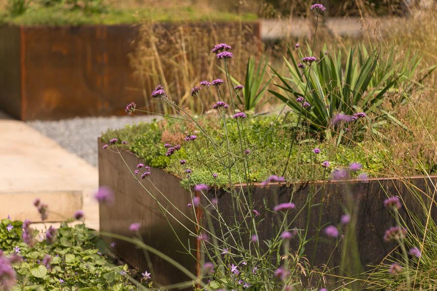 Modern Strakke Binnentuin Dutch Quality Gardens De Lingebrug 28