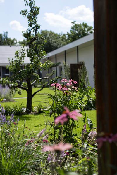 Modern Strakke Binnentuin Dutch Quality Gardens De Lingebrug 4