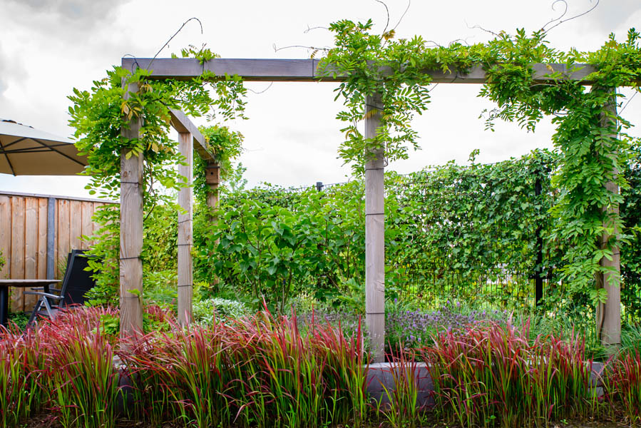 Moderne Tuin In Diagonalen Dutch Quality Gardens Eshuis Hoveniers 2