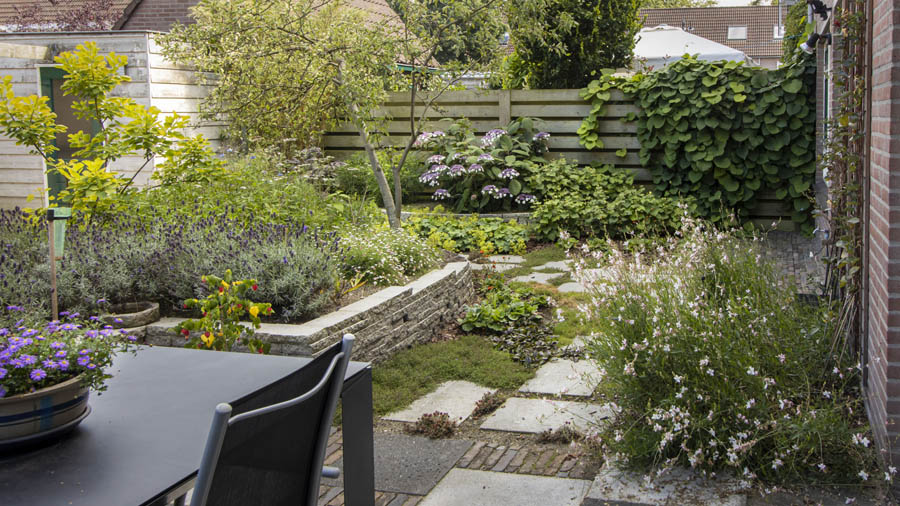 Natuurlijke Tuin Dutch Quality Gardens Van Ginkel Tuinen 1