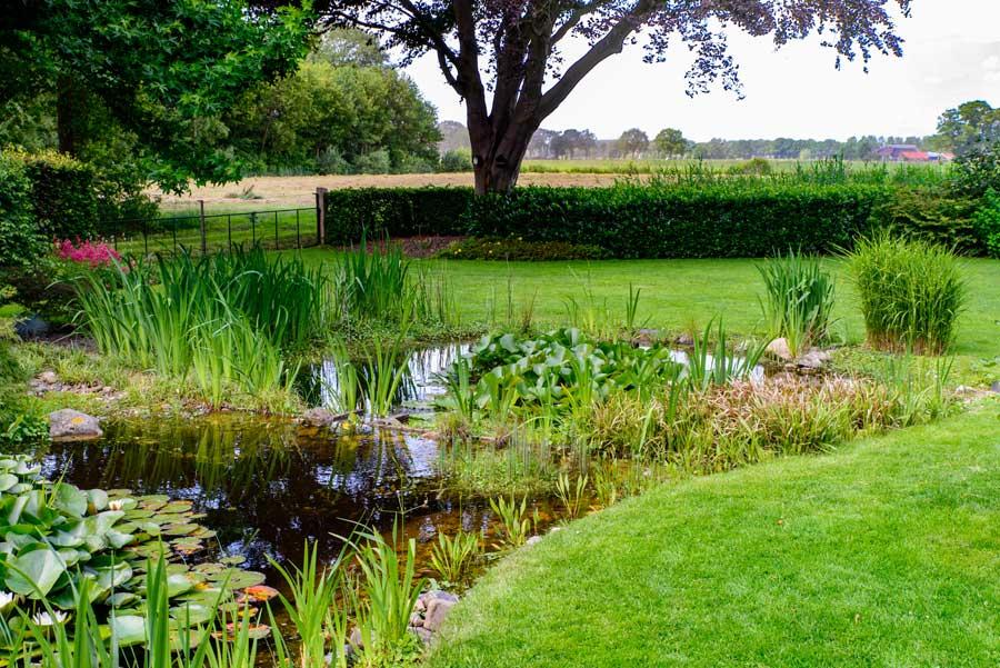 Tuinvoorbeeld Groene Tuin Met Houten Overkapping De Brinker Tuinen 10