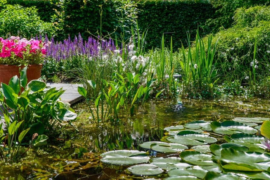 Tuinvoorbeeld Groene Tuin Met Houten Overkapping De Brinker Tuinen 3