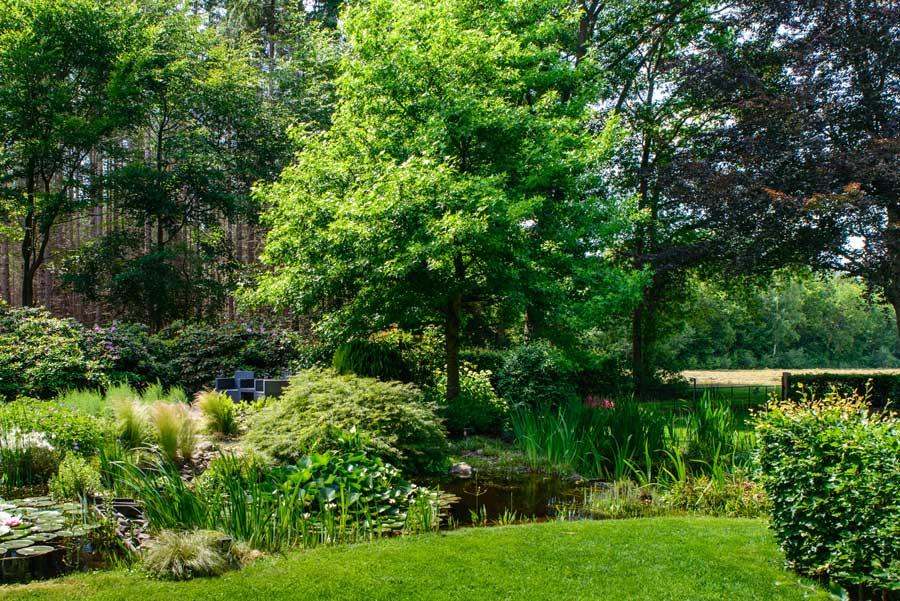 Tuinvoorbeeld Groene Tuin Met Houten Overkapping De Brinker Tuinen 4