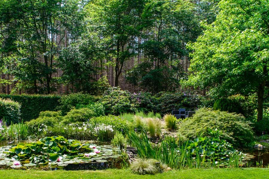 Tuinvoorbeeld Groene Tuin Met Houten Overkapping De Brinker Tuinen 5