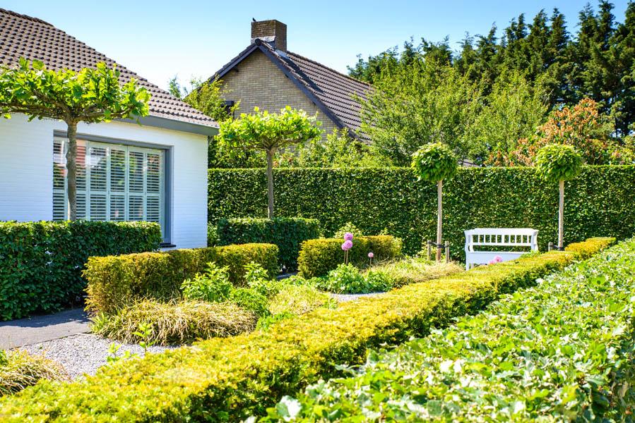 Groene Voortuin In Steenbergen (2)