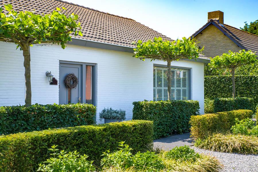 Groene Voortuin In Steenbergen (3)
